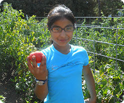 girl holding red tomato