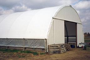Hoop Structures For Swine