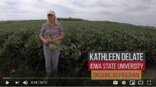 Image from Youtube video of organic field day.